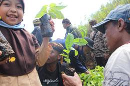 雨期(12 ~ 3 月)を中心とした植林活動には、 全国で計 1,875 人が参加。