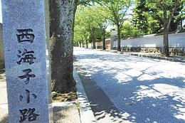 西海子小路の道