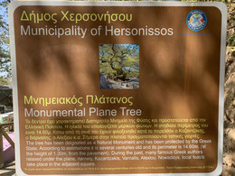 Griechenland, Kreta, Sehenswürdigkeit, Reisebericht, highlight, Urlaub, Ambelos, Pass, Platane, Naturdenkmal