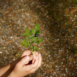 Blogbeitrag Glück erkennen