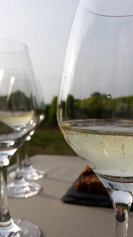 dégustation-oenologique-vins-pétillants-fines-bulles-Loire-Vouvray-Champagne-Crémant-Rendez-Vous-dans-les-Vignes-Myriam-Fouasse-Robert