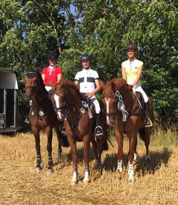 Für die Mannschaft sind geritten: Theresa Gunnemann, Sönke Fallenberg, Kim Kuhlmann und Günther Lange (nicht auf dem Foto)