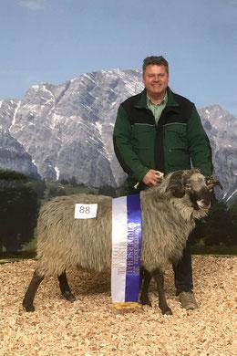 Edgar Wernbacher mit Alpinem Steinschaf Widder Ötzi