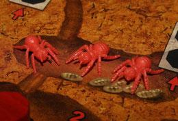 Ameisen in der Arbeiterkammer