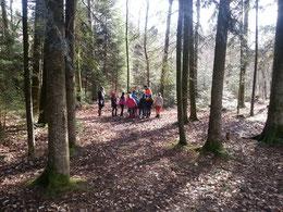 forstliche Waldpädagogik mit einer Schüler*innen