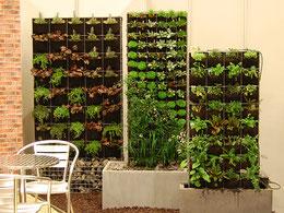 Horticult plantenbakken en -wanden