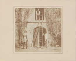 """calotype from 1845, collection of Metropolitan Museum of Art, """"www.metmuseum.org,"""""""