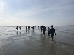 Meer ohne Wasser - eine neue Erfahrung für die israelischen Teilnehmer bei der Wattwanderung in Cuxhaven - Fotos: M. Fendt, C. Hoffmann