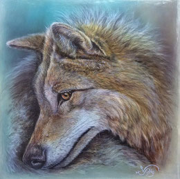 Wolf Artenschutz Tierportrait Illustration