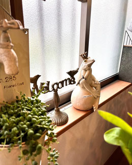 練馬 桜台 ガーデニングショップ かのはの 店内。観葉植物など植物の飾り方のご提案。好みの物が見つかるように、低価格でセンスの良い商品が多数あります。プチギフトとしても最適です。観葉植物 多肉植物 エアープランツ 季節の花 練馬 桜台 癒しスポットです