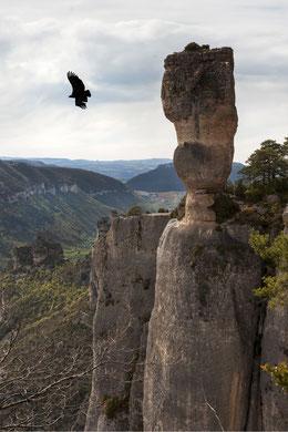 vacances-sport-et-nature-gorges-de-la-jonte-le-colombier-saint véran-location-meublé-de-tourisme-aveyron-occitanie-france