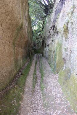 Etruskischer Hohlweg bei Pitigliano