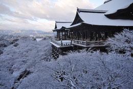 URL:http://photo53.com/ サイト名:「京都フリー写真素材」