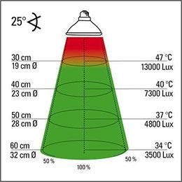 """Abb. 3: Wärmeverteilung bei einem 50 Watt Halogenstrahler unter """"Idealbedingungen"""". Grafik: Lucky Reptile"""
