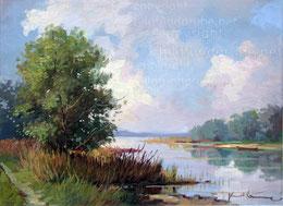 Flusslandschaft bei Altenrhein SG
