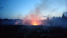 Waldbrand zwischen Oberwart und Buchschachen