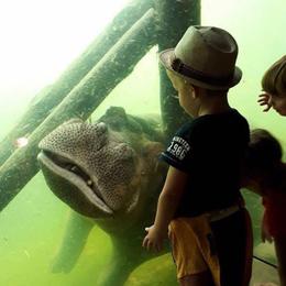 Beste dierentuin Nederland