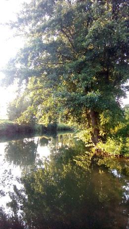 Le cours de l'eau est le miroir des pensées.