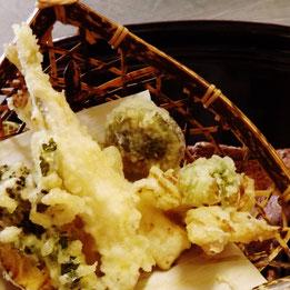 山菜蕗の薹こごみたらの芽こしあぶらわらびわさびなあいこ