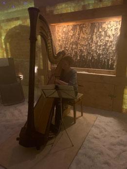 Krystyna Dombik - Diplom-Harfenistin, SALINUM Hagen