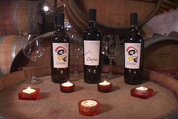 Reservas Ruta del Vino