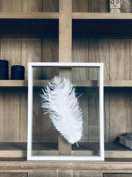 cadre plume, déco mur
