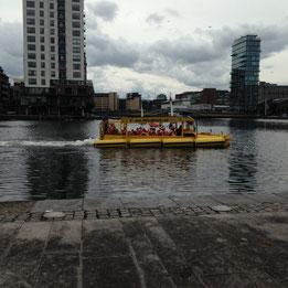 Viking tour boat