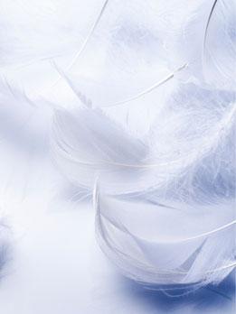 energeticienne guerisseur 65 evasion et bien etre lannemezan centre de bien etre et esthetique lithotherapie praticienne et enseignante reiki lahochi soin energetique medium cartomancie energies sonotherapie bol tibetain bol cristal relaxation meditation