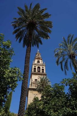 Photographie, Espagne, Andalousie, patio de los naranjos, omeyyade, mosaïques,  maqsura, islam, art, architecture, lumière, prières, clocher-minaret, palmiers,, M
