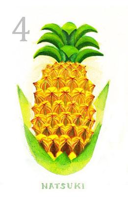4月 パイナップル