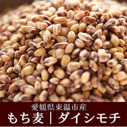 ★幻もち麦=ダイシモチ【国内産】