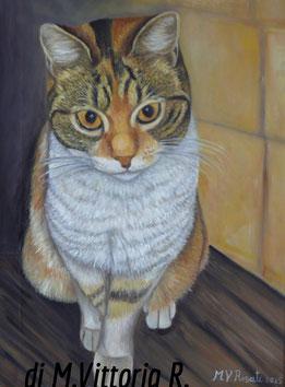 La mia gatta, olio su tela cm 30x40 anno 2015 collezione privata