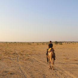 Camel Ride Thar Desert