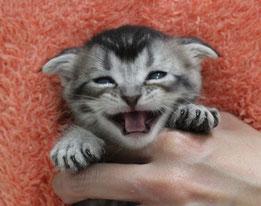 この笑顔が素敵