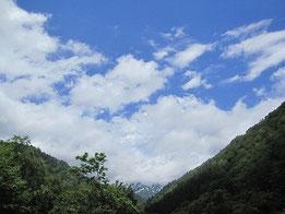 同時刻での鉱泉の空は青空。日が出ると鳴くエゾハルゼミの大合唱が鳴り響いていました。