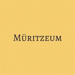 Müritzeum
