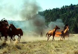 Feinde - Hostiles   (Bild: screenshot)