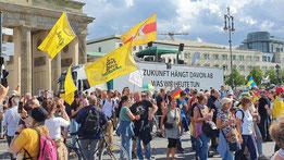 """""""QAnon""""-Fans mit Klapperschlangen-Flaggen (""""Gadsen Flags"""") auf der """"Querdenken""""-Demonstration am 29.08.2020 in Berlin. (Quelle: Belltower.News/SL)"""