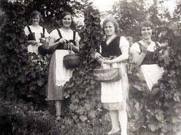 Winzerfrauen possierten 1931 für den Fotografen. (Archiv Heimatverein Odd / Brückenhofmuseum)