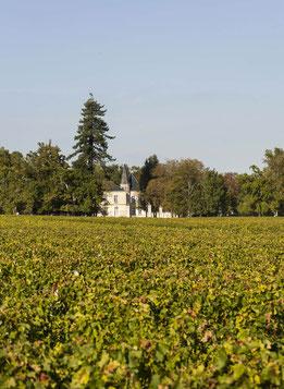 Château Lynch-Moussas      (Foto: Lynch-Moussas)