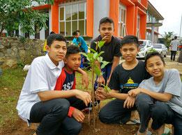 校舎の前にグアバの木を植林。大きくなり実をつけ るのが楽しみ!
