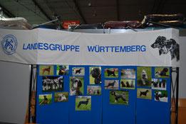 LG-Infostand Messe ANIMAL