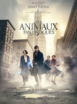 Les Animaux Fantastiques de David Yates - 2016 / Fantastique