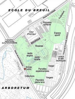 Plan du jardin de l'école Du Breuil. © Sandrine Tellier