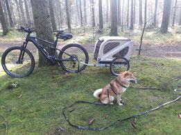 Ich mit unserem zweiten Radgespann