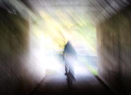 ●野川遊歩道のトンネル。出口の向こうは緑の世界