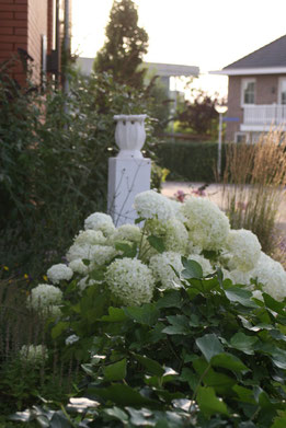 Hemerochorie Enschede August 2013, copyright Nathalie Arun