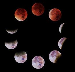 Bilder von der Mondfinsternis, aufgenommen mit einer Canon 600d und einer 300mm Linse. Bilder: F. Bauer
