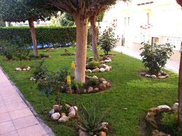 jardineria y mantenimiento de piscinas