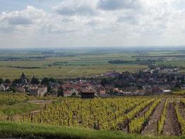 The Grand Cru village of Oger